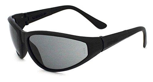 Guard-Dogs Aggressive Eyewear Sidecars 2 Sunglasses Smoke wFogStopper