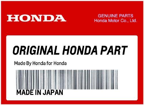 Honda Genuine Accessories Low Sissy Bar Upright