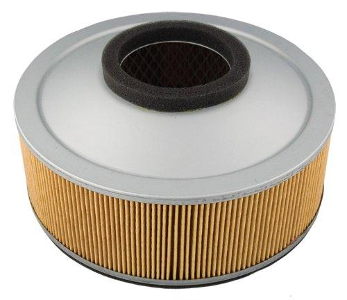 Hiflofiltro Hfa2801 Premium Oe Replacement Air Filter