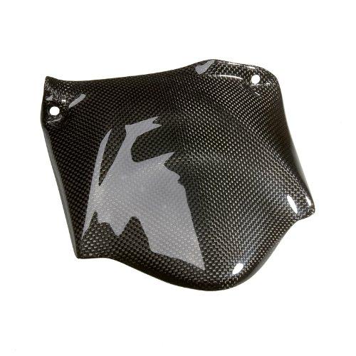 LP-USA CARBON DYNAMICS Ducati 749 999 0304 - Carbon Rear Fender Small
