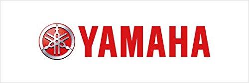 Yamaha STR-1D626-91-00 Chrome Metal Fender Tip for Yamaha Royal Star