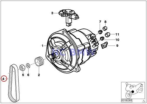 BMW Genuine Motorcycle Ribbed V-Belt - 4PK592 R1100S R1200GS HP2 Enduro HP2 Megamoto R1200R R1200ST R1200S R1150GS R1150 Adventure R1150RS R1150RT R1150R R1150R Rockster