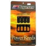GAS GAS Rad Valve Power Reed Kit EC 200 1999-2006  EC 250 1997-2005  MC 250 1998-2005  EC 300 1999-2005 Boyesen Motorcycle  ATV RL-91