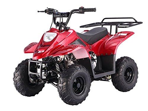 TAO TAO Model  ATA Boulder B1 Kids 4 Wheeler 110cc ATV comes 90 Assembled - ALL COLORS AVAILABLE