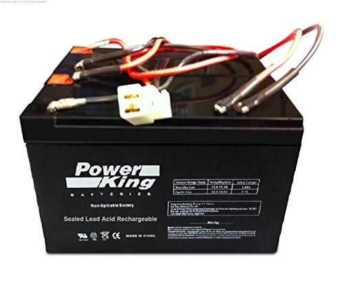 Razor SCooter Battery E200300- E200 V13 E300 V11 V13 - W13112430185 Beiter DC Power Replacement Battery Includes Wiring Harness