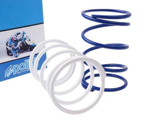 Polini 243020 - P243020 - Torque Spring Set for the Honda Ruckus or Metropolitan 50cc scooter
