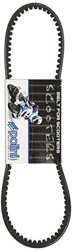 Polini 248063 - P248063 - Kevlar Belt for the Honda Ruckus 50cc scooter
