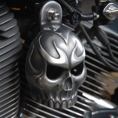 Harley Aged Aluminum Evil Twin Skull Horn Cover